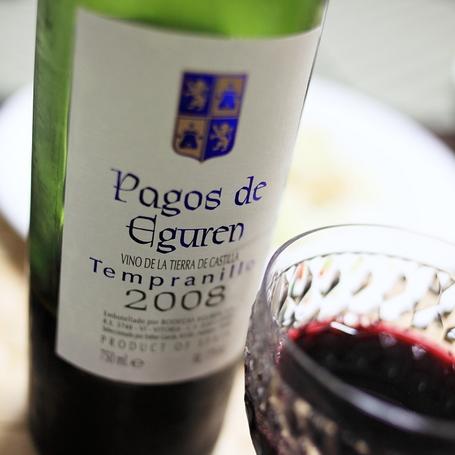 Pagos_de_Eguren_2008.JPG